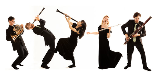 Atéa Wind Quintet, Chris Beagles, French horn, Philip Haworth, oboe, oboeist, oboist, Anna Hashimoto, clarinet, clarinettist, Alena Lugovkina, flute, flutist, flautist, Ashley Myall, bassoon, bassoonist,